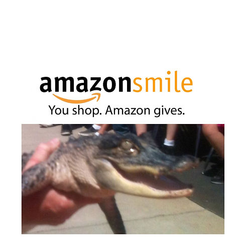 Alligator and amazon.JPG