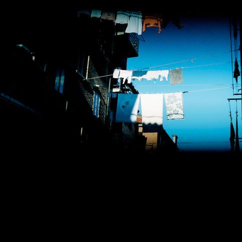 Venice 2008 ©carole b