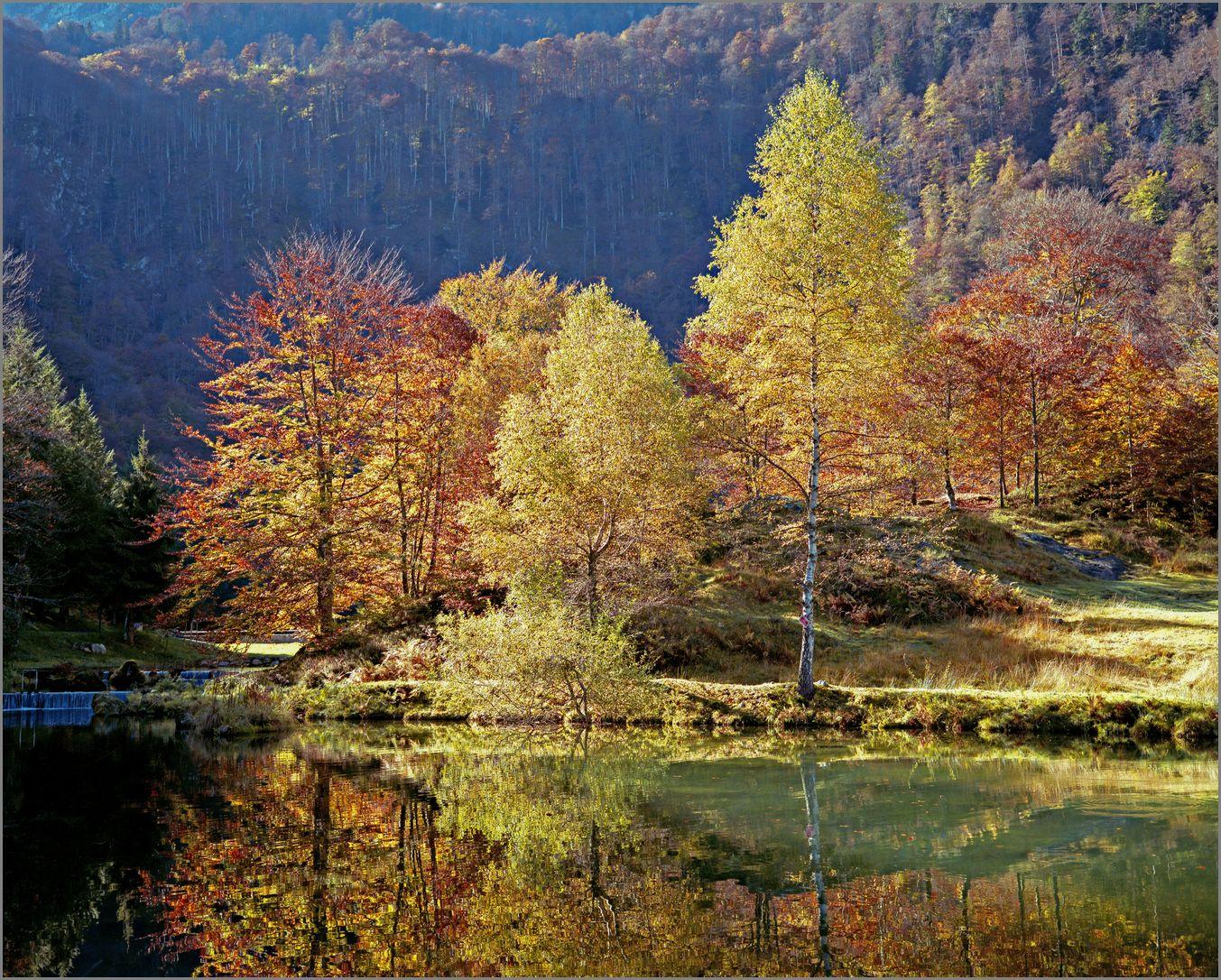 Couleur d'automne_24