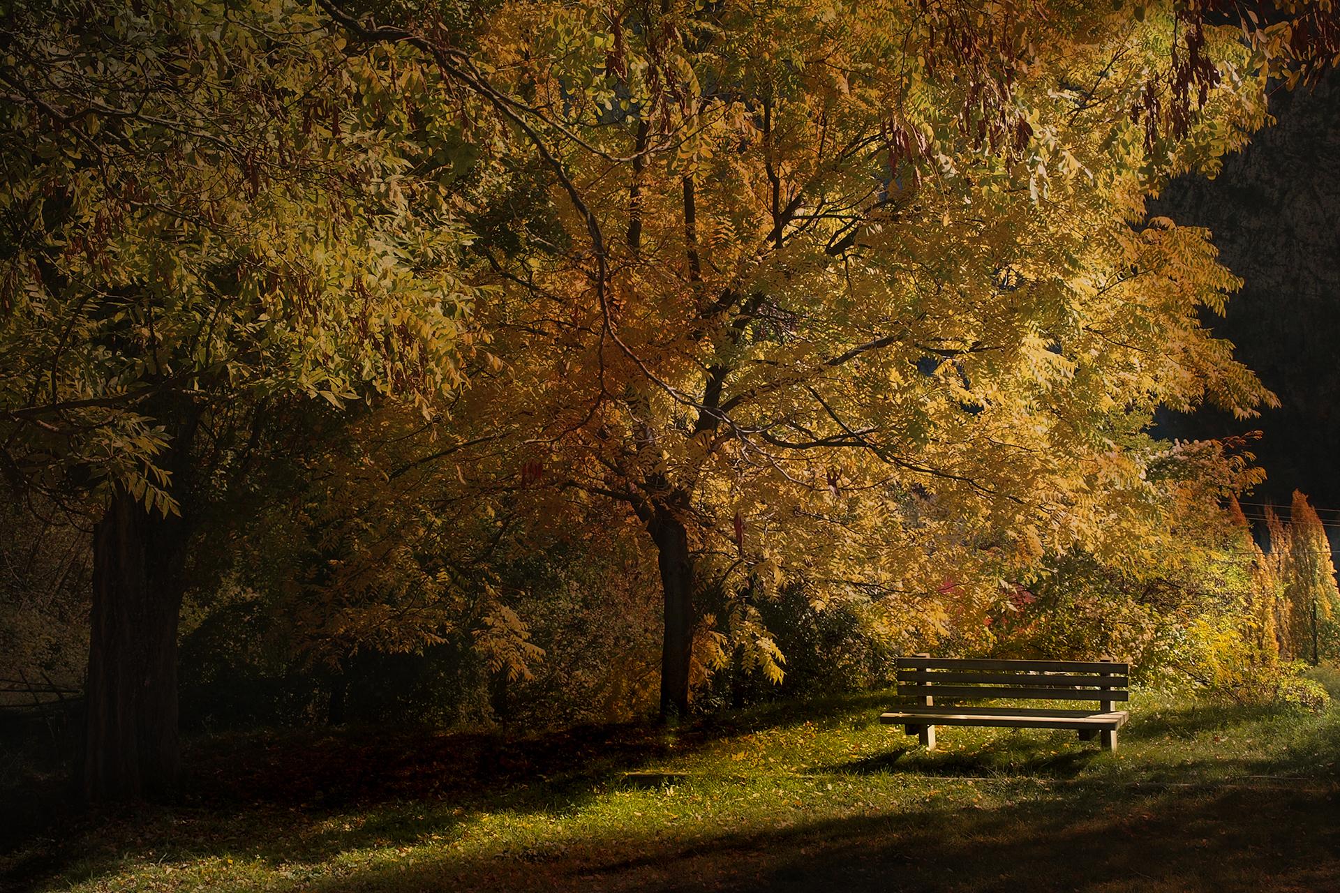Couleur d'automne_39