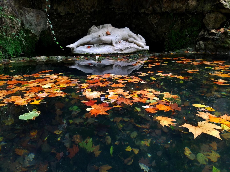 Couleur d'automne_59