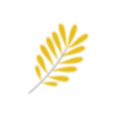vector image.png