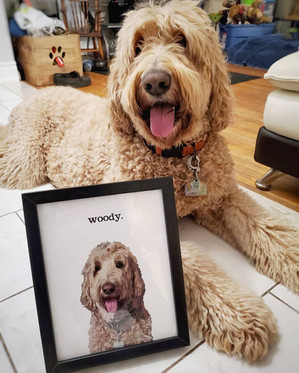 """Woody"""