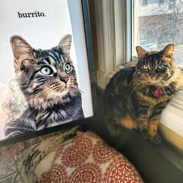 """burrito"""
