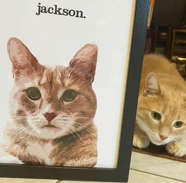 """jackson"""