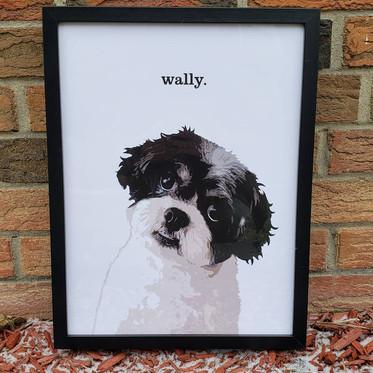 """""""wally"""""""