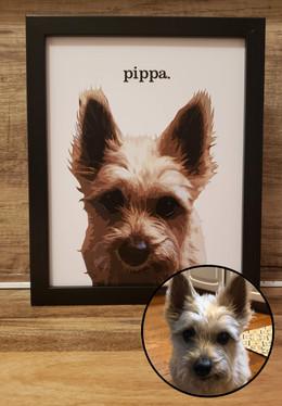 """""""pippa"""""""