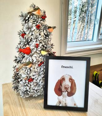 """franchi"""