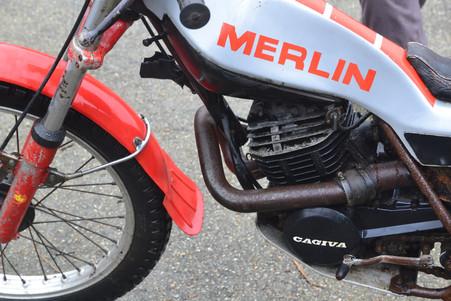 Merlin DG7 for sale