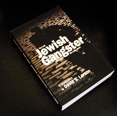 The Last Jewish Gangster book