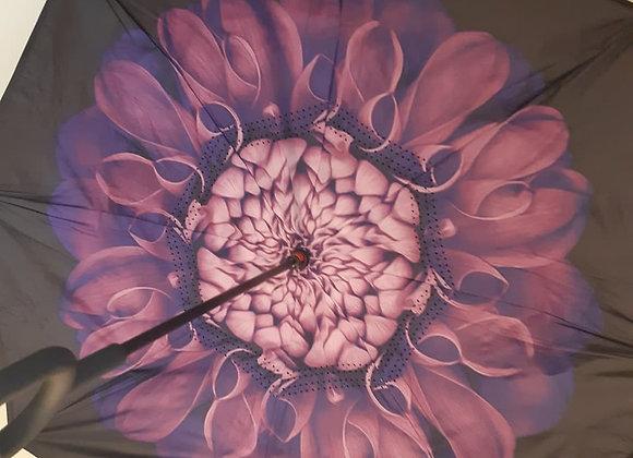 Umbrello - Standing Umbrella - Purple