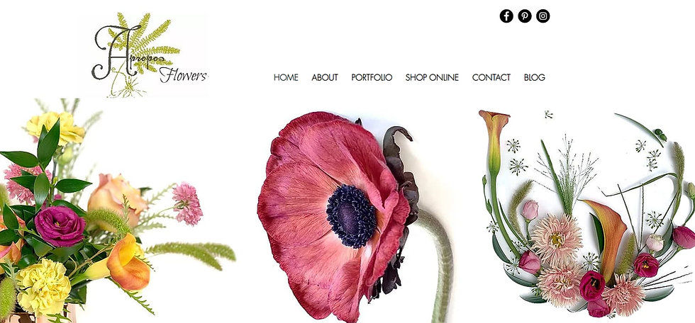 apropos website example.jpg