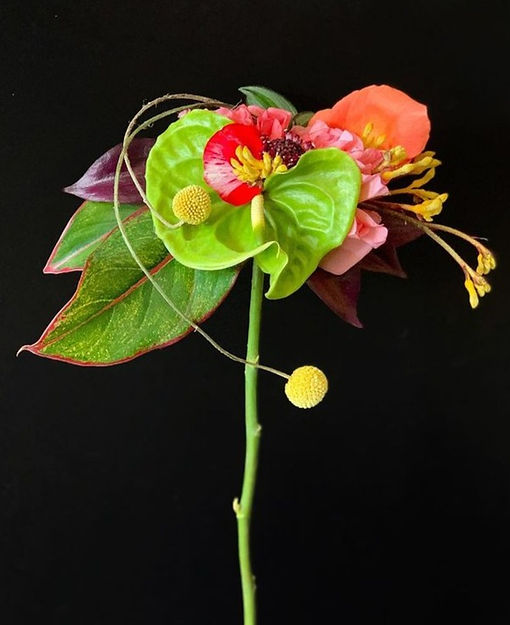 flowers%20on%20black%203_edited.jpg