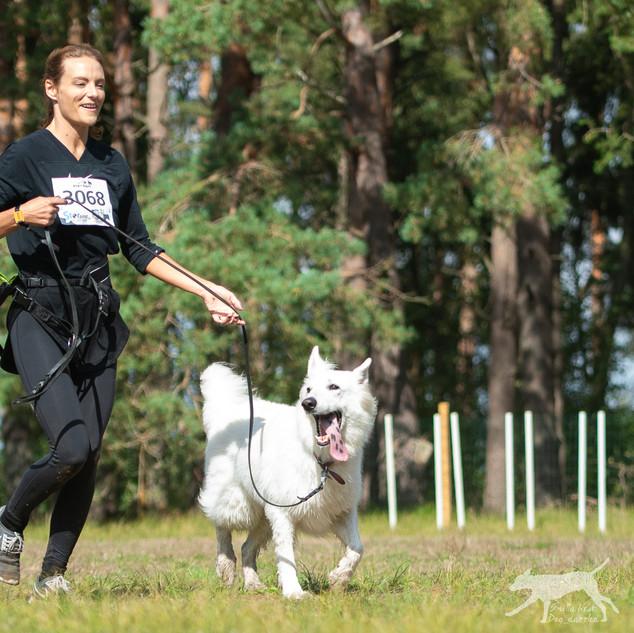 K9 Biathlon_-177.jpg