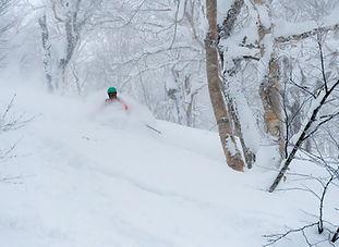 Powder Skiing Japan