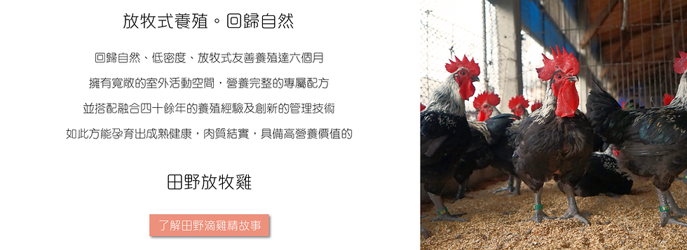 TienYeh_chicken_simple.png