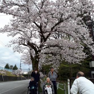 デイサービスひだまり『桜』
