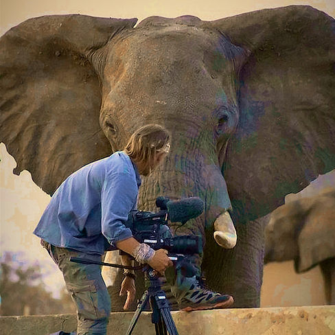 Al and Elephant at Elephant Sands.jpg