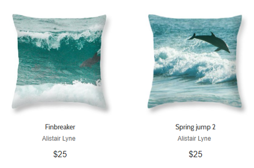 Pillow Dolphin.PNG