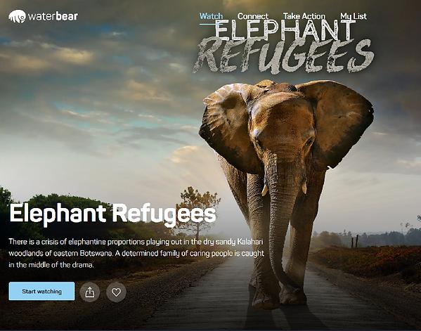 Elephant Refugees on Waterbear.com