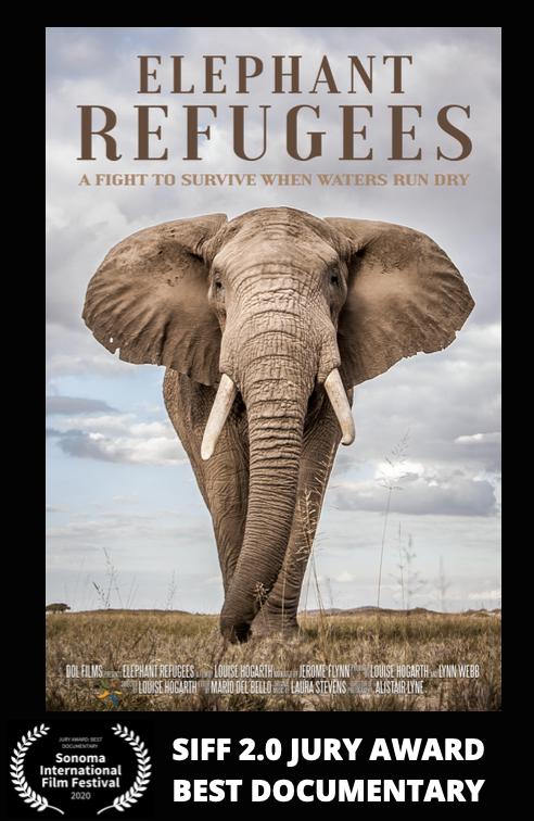 Elephant Refugees.png
