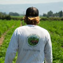 hemp-farm-4.jpg