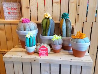 VE création-cactus