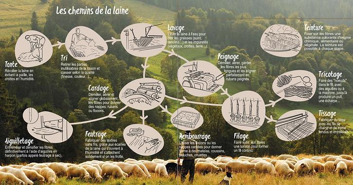 le chemin de la laine Adeline.PNG