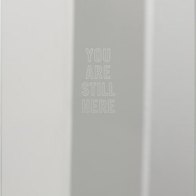 Mona Hatoum, You Are Still Here, 2013