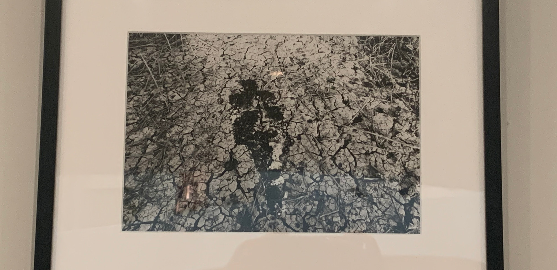 Ana Mendieta, Untitled: Silueta Series, 1978