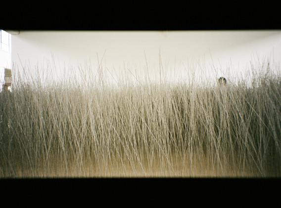 Lee Ufan, Relatum, 1969/2019