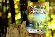 Vision-Speak-on-stump-for-web.jpg