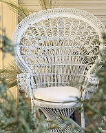 This beautiful peacock chair is now avai