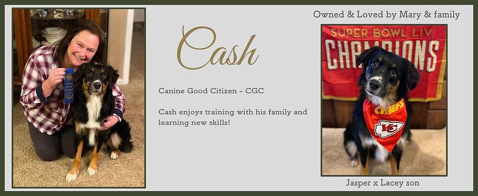 Cash Slide.jpg