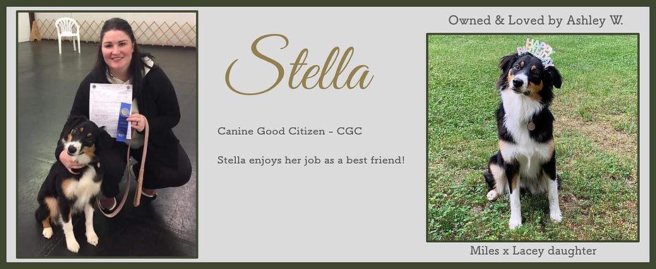 Stella Slide.jpg