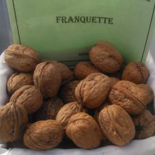 Noyer Franquette