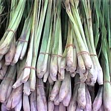 Citronnelle de Madagascar