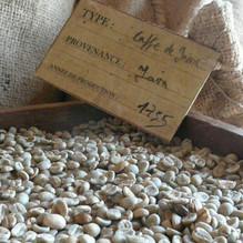 Café arabica Éthiopie