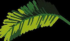 tropikalnych liści