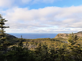 Crow Head Road overlooking Conception Bay