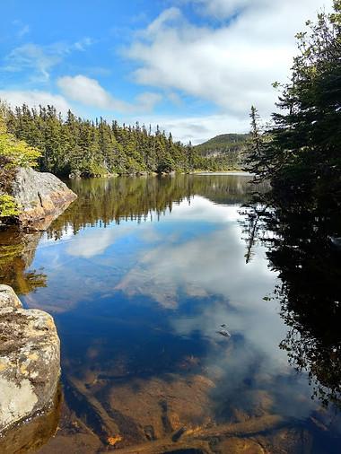 Little Herring Cove Pond