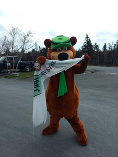 Yogi Bear helping raise the flag