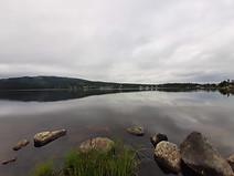 Stillness between fish jumps on Herring Cove Pond