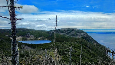 Little Herring Cove Pond and Conception Bay