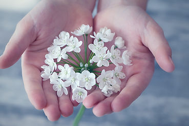 Main fleur protéger votre santé.jpg