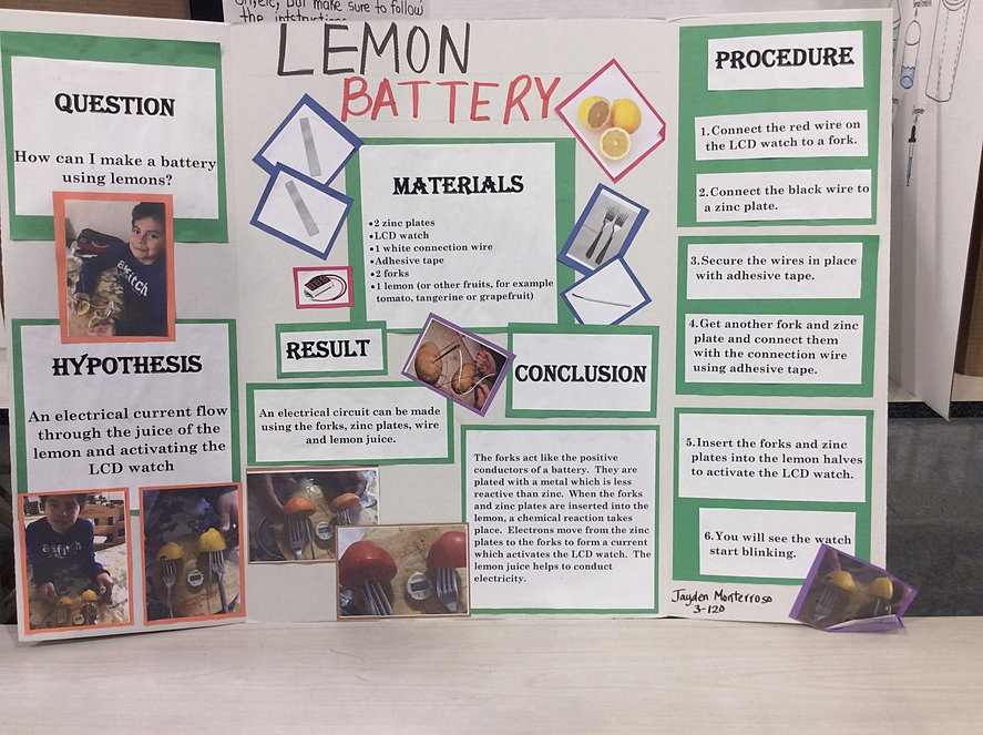 battery science fair projects How to create the biological battery science fair project.