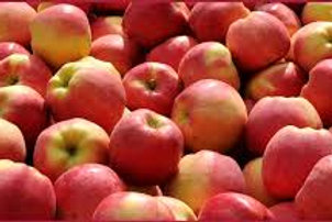 APPLES - AMBROSIA