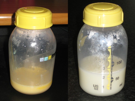 Colostrum: the liquid gold one should never miss