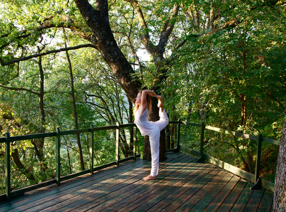 meditation deck in the woods