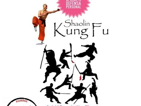 Kung Fu en Verano